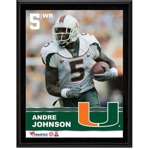 Andre Johnson Miami Hurricanes Sublimated 10.5
