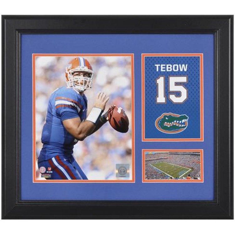 "Tim Tebow Florida Gators Campus Legend 15"" x 17"" Framed Collage"