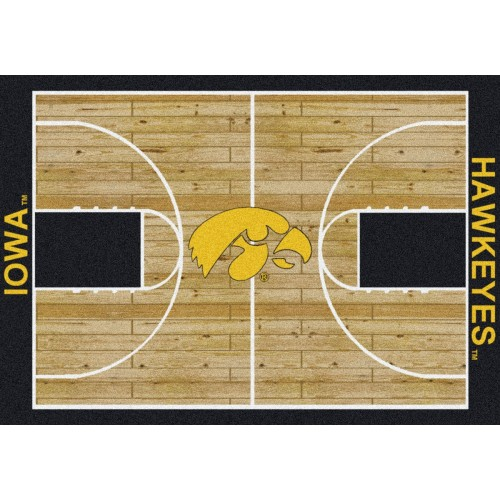 Iowa Hawkeyes 3 10 x 5 4 Home Field Area Rug