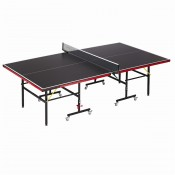 Table Tennis (10)