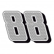 Dale Earnhardt Jr. (48)