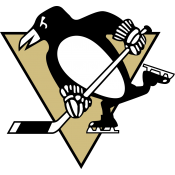 Pittsburgh Penguins (306)
