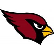 Arizona Cardinals (254)
